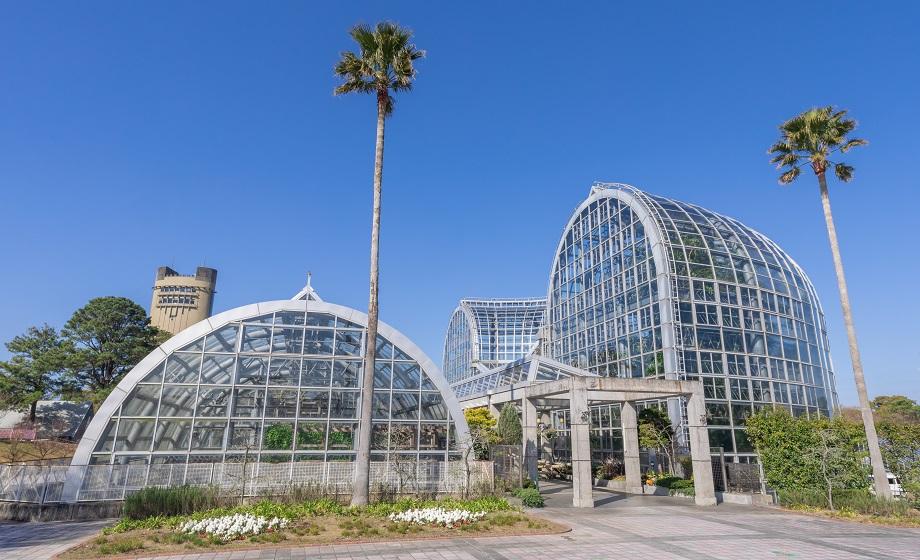 植物園のシンボル温室