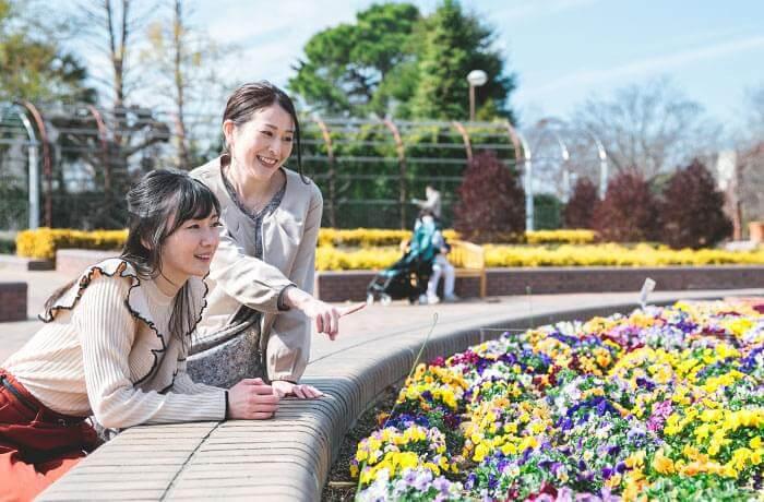 四季の変化を楽しむ屋外植物園