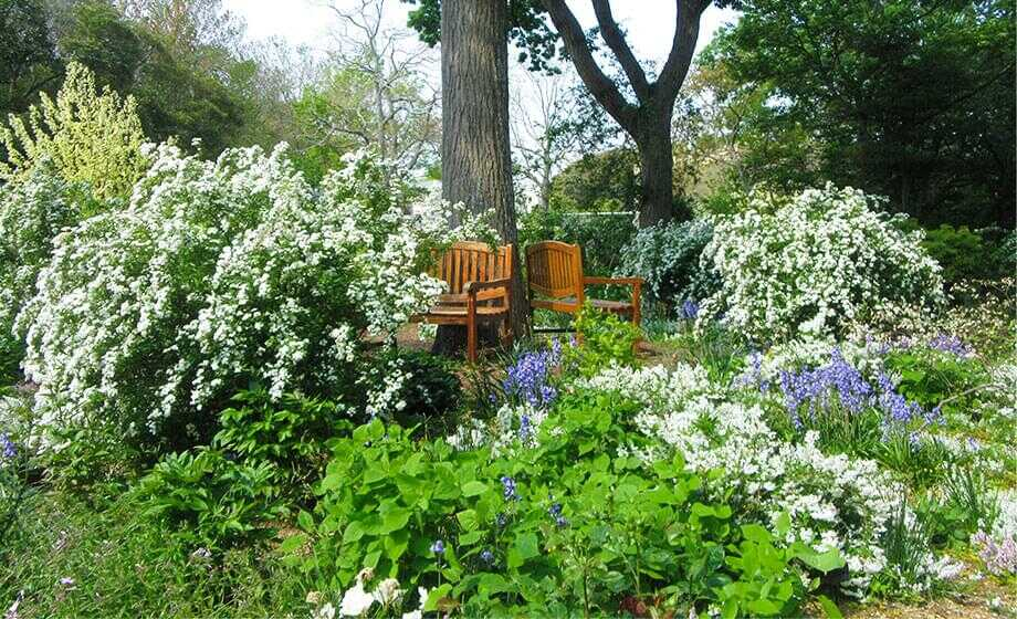 花と香りの園