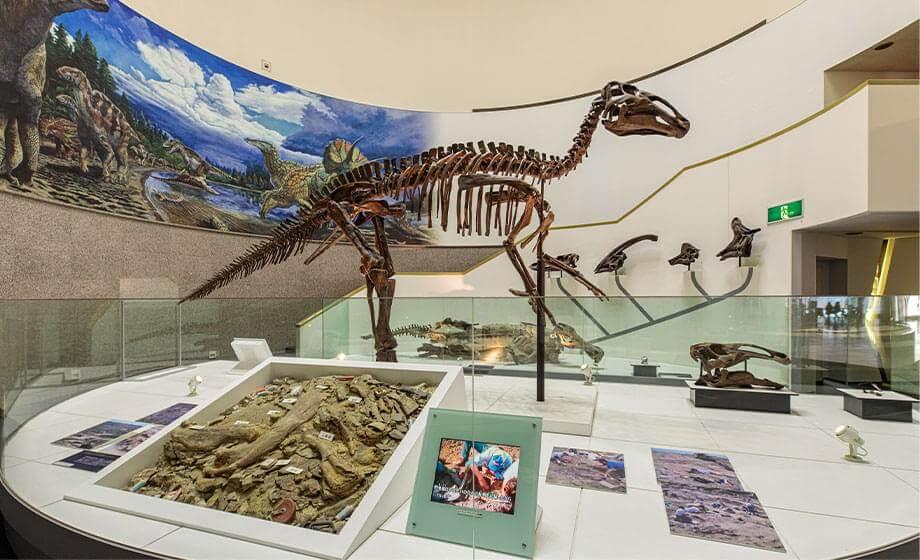 エドモントサウルス展示室